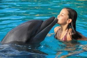 dolphin-kids-e7953ca0